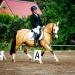 Kirchdorf_Classics-4327_WEB