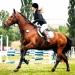 Kirchdorf_Classics-4383_WEB